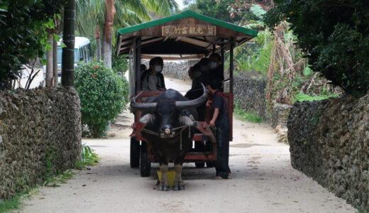 2020年12月沖縄離島の旅その2:竹富島で水牛車と昔ながらの沖縄の集落を散策